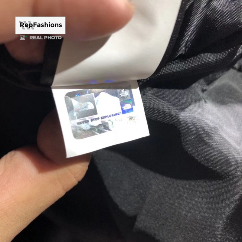 Replica Supreme The North Face Mountain Parka Hologram